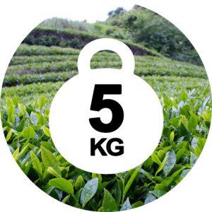 چای 5 کیلو یی