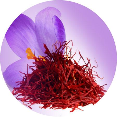 Saffron-زعفران-Iran-food-group-ایران-فود-گروپ